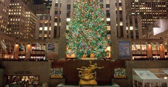 全球十大最酷的聖誕樹特輯