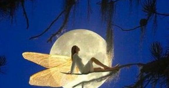 月亮上好擠!五個月亮之神一起陪你過中秋