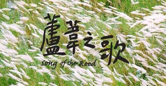 跳脫悲傷的代名詞:《蘆葦之歌》台灣慰安婦阿嬤的溫柔強韌