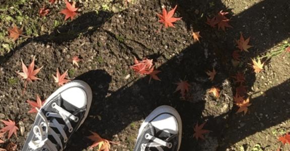 2015 寫給自己的成長:每次受傷的自己,都值得珍惜