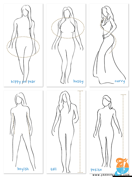 body types.png
