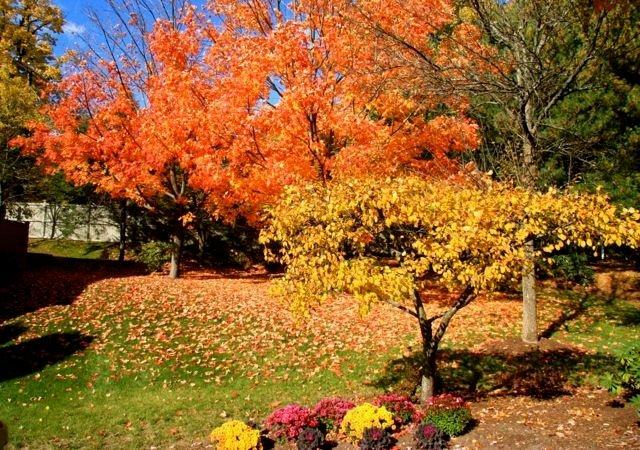 屬於我們的散心時光 秋天