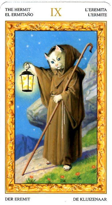 Zora 左拉老師 白貓塔羅占卜對方愛的是誰?