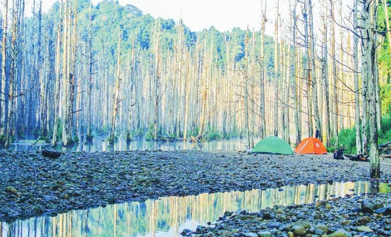 在海拔1800公尺的水漾森林「包場」露營,是一生難忘的經驗。