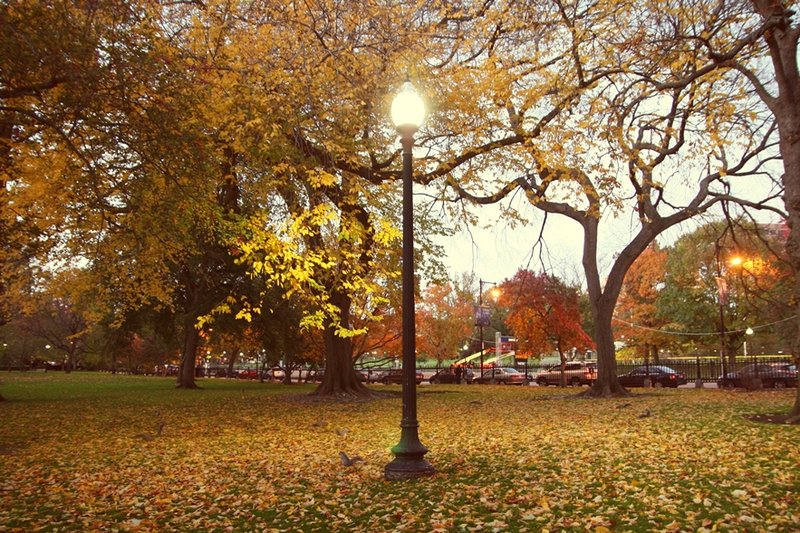 boston-common-public-garden-autumn-1