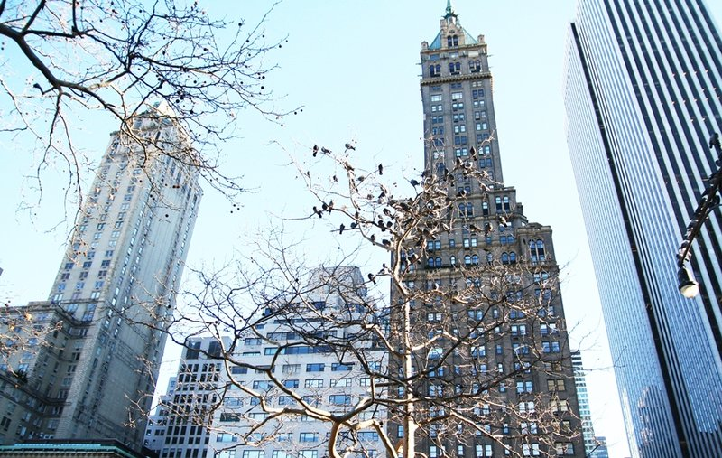 once-upon-a-time-in-new-york-2