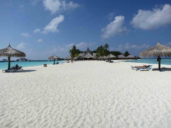 維利甘度島度假村, 阿里北環礁的照片