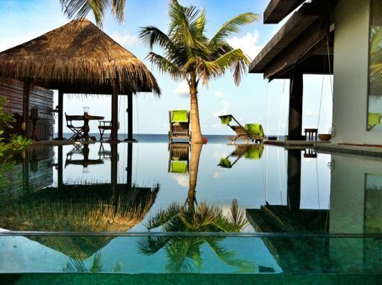 馬爾代夫娜拉杜度假村, 馬列南環礁的照片
