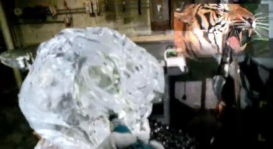 Google Glass - ice sculpturing