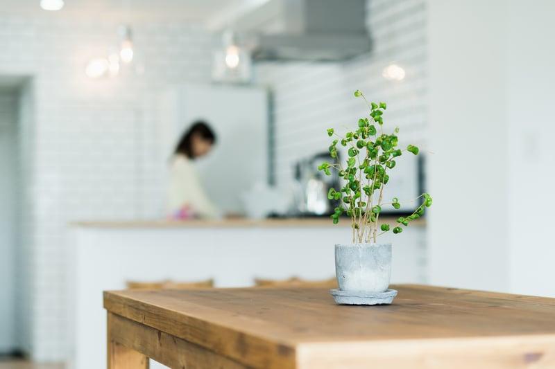 畫面中有一張餐桌,後面有一個女性在廚房裡忙碌