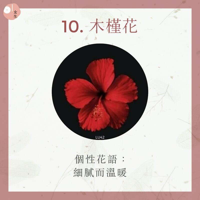 10.木槿花