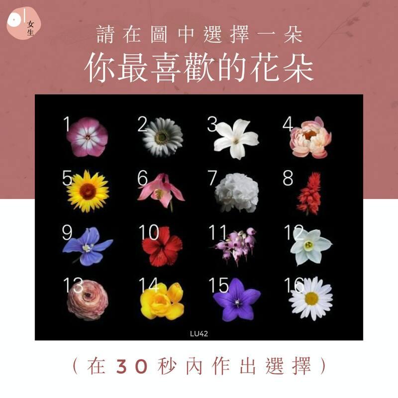 請在圖中選擇你最喜歡的花朵
