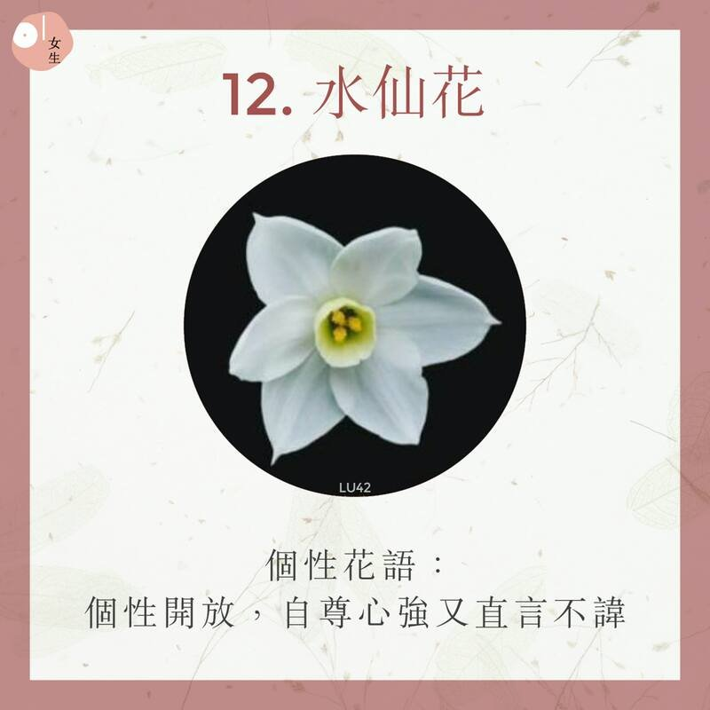 12.水仙花