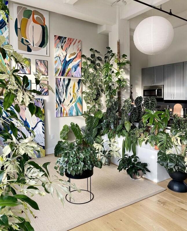 綠意盎然的室內空間。