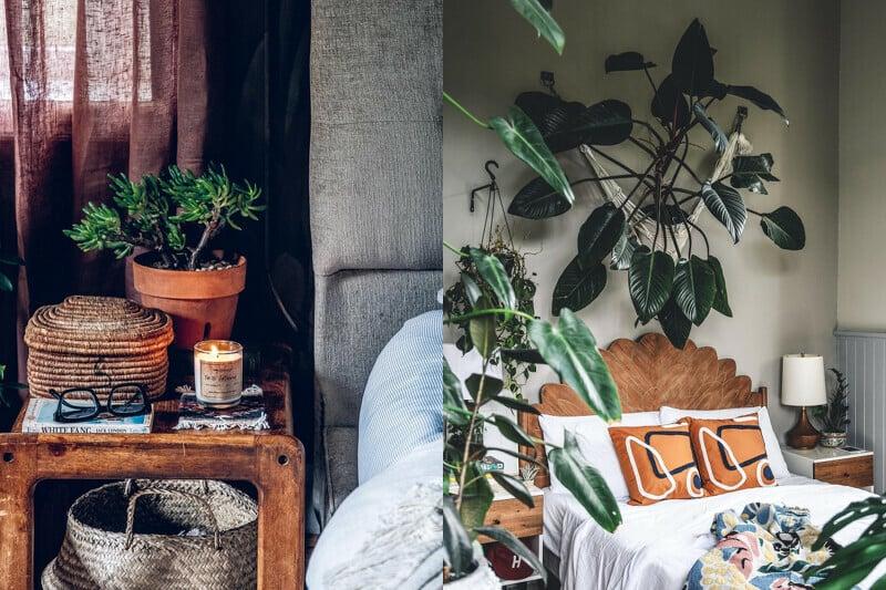 房間也不忘用植物妝點。