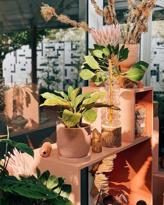 販售許多特色花器。