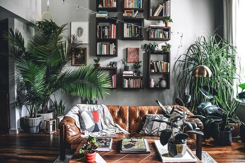被滿滿的植物包圍著的住家客廳空間。