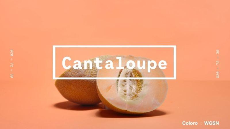 Cantaloupe哈密瓜橙色比起2019的年度色珊瑚色更柔和、活力。(WGSNxColoro)