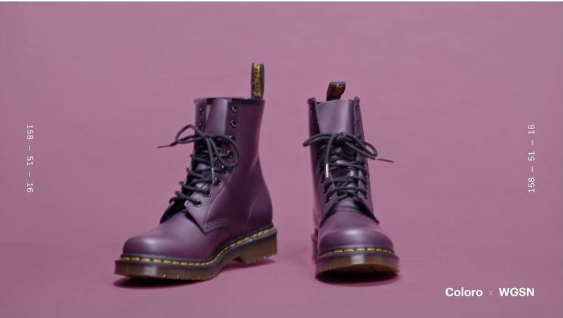 灰紫紅將會擴展到男性市場。(WGSNxColoro)