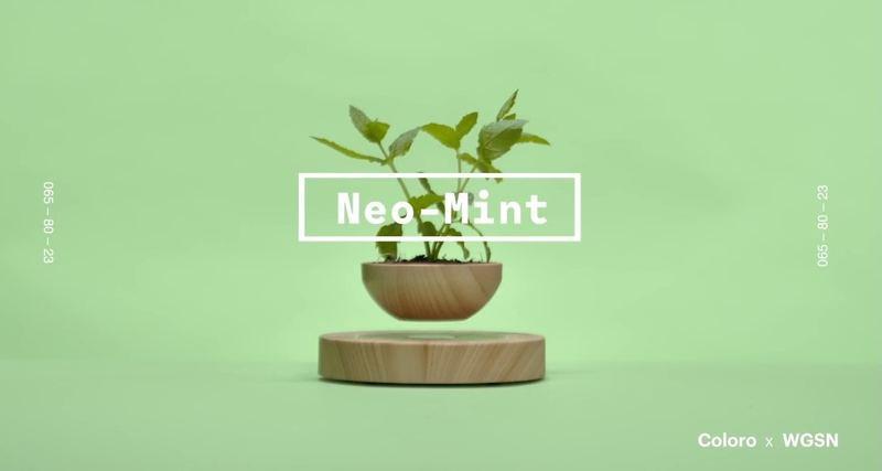 Neo Mint薄荷綠色在2020將會成爲年度顔色。(WGSNxColoro)